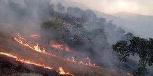 آتش سوزی در زاگرس به مرحله کنترل رسید