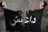 داعشی به نظامیان عراقی حمله کردند/کشته شدن 4 نظامی عراقی در حمله اخیر