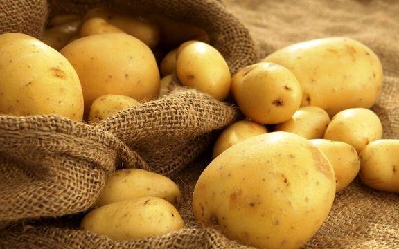 چرا سیب زمینی دوباره گران شد؟