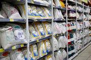 توزیع  240 هزار تن کالاهای اساسی در بازار در آستانه ماه مبارک رمضان