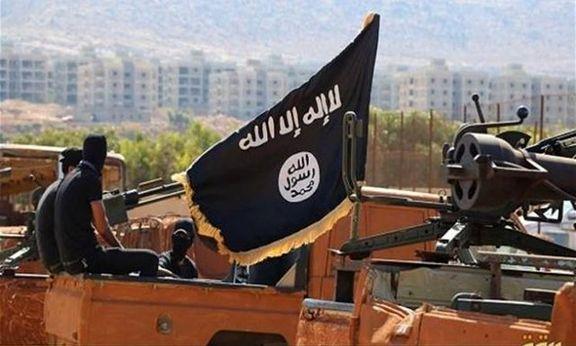 حشد الشعبی : اگر تمرکز را بر روی اعتراضات بگذاریم داعش به عراق برمیگردد