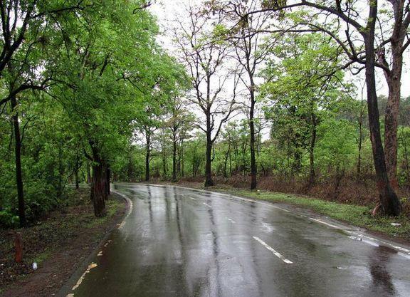 هوای شمال جمعه و شنبه بارانی می شود!