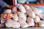 قیمت مرغ تا آستانه 22 هزار و 500 تومان کاهش یافت