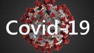 آمار رسمی مبتلایان به کووید 19 در تاریخ 21 شهریور