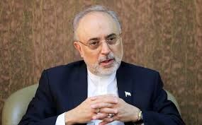رئیس آژانس اتمی ایران وارد وین اتریش شد