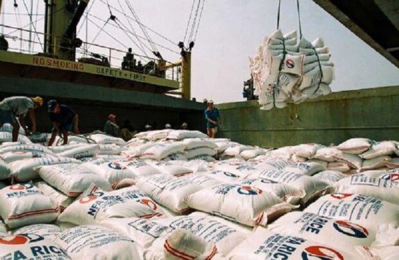 توزیع برنج وارداتی، بازار را به ثبات میرساند