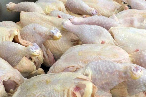 قیمت مرغ بسته بندی در میادین تره بار زیر 10 هزار تومان شد