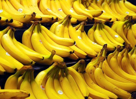 قیمت موز از شنبه به زیر 30 هزار تومان میرود