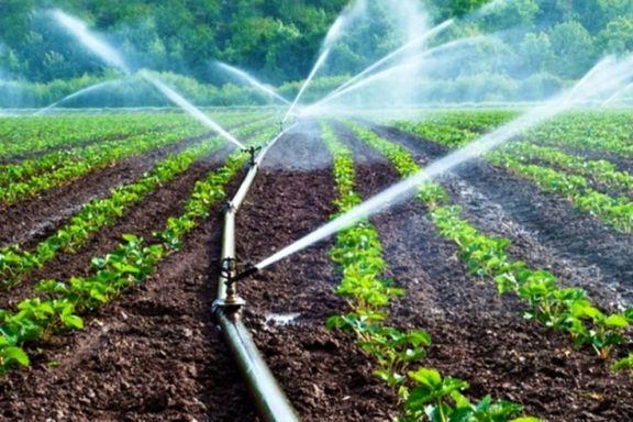 ورود آب کشاورزی کالیفرنیا به بورس کالا