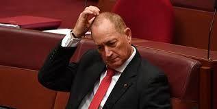محکومیت سناتور ضد اسلام استرالیایی