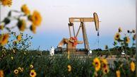 نشست فوقالعاده اوپک پلاس فردا شنبه 17 خرداد برگزار میشود/ آیا نفت از 40 دلار فراتر میرود ؟
