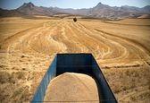 احتمال تولید ۱۴ میلیون تن گندم در کشور