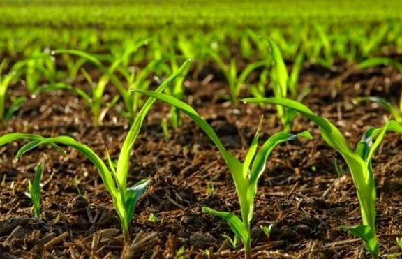 اولین مرحله پرداخت غرامت به کشاورزان سیل زده از 15 فروردین