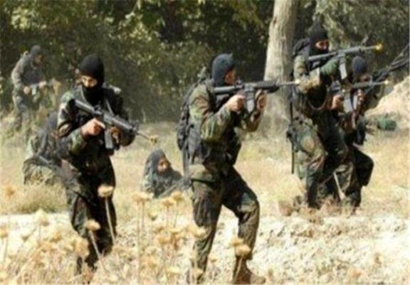 دستگیری اعضای یک گروه تروریستی توسط نیروهای امنیتی الجزایر