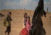 سازمان ملل متحد آمار داعشی های مستقر در سوریه و عراق را اعلام کرد