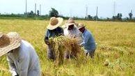 میزان تسهیلات اعطایی به کشاورزان در سال 98 چقدر بوده است؟
