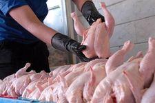 امکان افزایش قیمت مرغ شب عید وجود ندارد