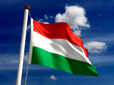 انتقاد شدید رئیس بانک مرکزی مجارستان از «یورو»