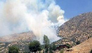 مصر و امارات حمله پهپادی ترکیه به عراق را محکوم کردند