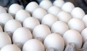 قیمت هر شانه تخم مرغ به بیش از ۵۵ هزار تومان رسید