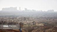 هواشناسی: تهران در هفته آینده با آلودگی همراه است