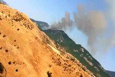 جنگل های ارسباران در آتش می سوزند