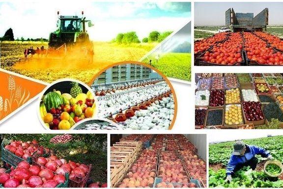 ارزاوری صادرات بخش کشاورزی و غذایی بیش از حد پیشبینی شده بود