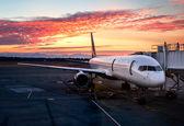 با کاهش شرایط قرنطینه بلیط هواپیما دوباره گران شد