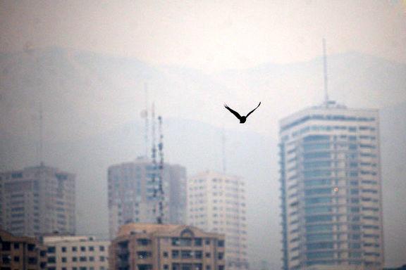 اورژانس تهران به شهروندان هشدار داد