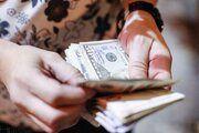 عرضه ۱۲۹ میلیون دلار به صورت حواله در سامانه نیما