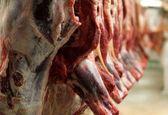 انبارهای گوشت و مرغ تنظیم بازار در سیل آسیبی ندیدهاند