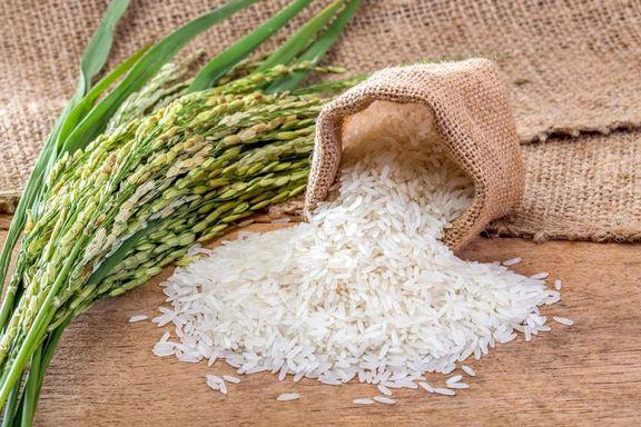 قیمت انواع برنج + جدول