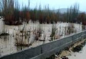 احتمال آبگرفتگی معابر در برخی استانهای شور طی دو روز آینده