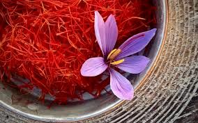 قیمت زعفران را باید عرضه و تقاضا در بازار تعیین کند