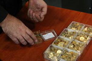 افزایش نرخ سکه در بازار تهران / هر سکه به 4 میلیون و ۴۶۵ هزار تومان رسید