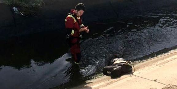 کودک 4 ساله در کانال آب غرق شد