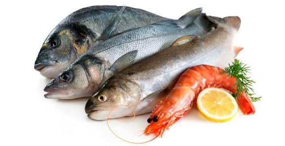 قیمت انواع ماهی و میگو