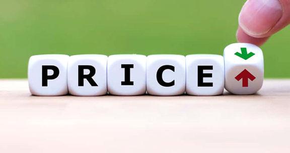 بازی زیرکانه و برد-برد دولت در زمین بورس برای حذف قیمتگذاری دستوری و کنترل نامحسوس قیمت کالاها