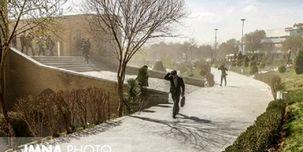 وزش باد شدید تهران / شکستگی شاخه درختان و سقوط اجسام سنگین
