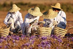 قیمت انواع زعفران در بازار + جدول