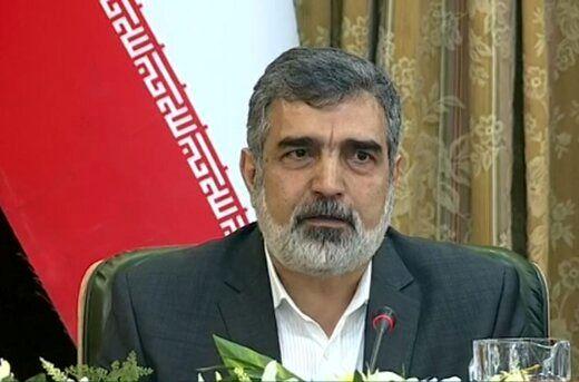 سخنگوی سازمان انرژی اتمی جزئیات جدیدی از سایت فردو اعلام کرد