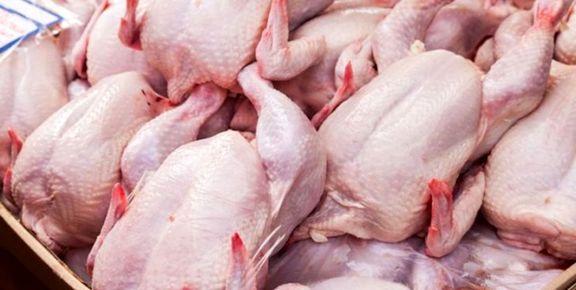 حداکثر قیمت مرغ 15 هزار و 900 تومان است / با توزیع مرغ منجمد جلوی افزایش قیمت مرغ را گرفتیم