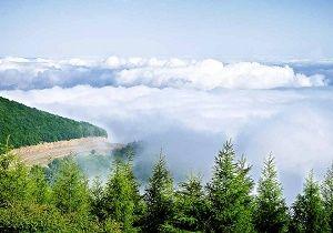 جنگل ابر شاهرود در فهرست جهانی ثبت شد