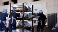 شمار تلفات کرونا در آمریکا به ۵۴۲ هزار نفر رسید