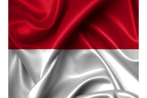 یک کِشتی در اندونزی آتش گرفت/  ۷ نفر کشته شدند