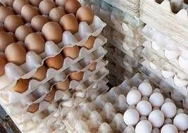 هشدار تولید کنندگان به افزایش قیمت تخم مرغ