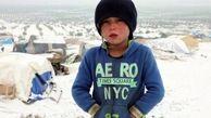 سازمان ملل از افزایش تعداد آوارگان سوری خبر داد