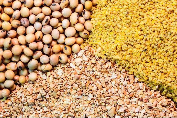 قیمت کنجاله سویا توسط ستاد تنظیم بازار تعیین شد