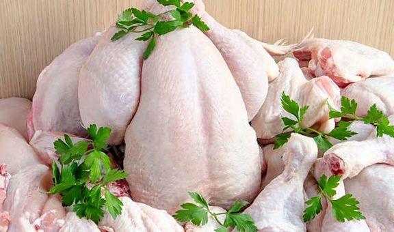 قیمت مرغ به ۱۰ هزار و ۳۰۰ تومان رسید