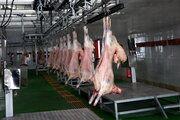 قیمت میانگین هر کیلوگرم گوشت گوسفندی 97 هزار و 750 تومان است